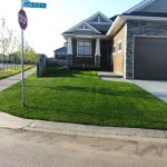 edmonton-sod-supply-portfolio-photo